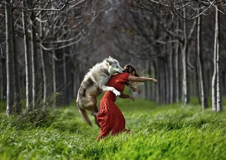 SW wolf